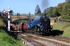 NYMR Autumn Steam Gala 2014 (BillyGoat75) Tags: pacific locomotive steamengine northyorkshire goathland nymr northyorkshiremoorsrailway lner sirnigelgresley goathlandstation 60007 autumnsteamgala classa4