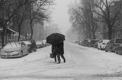 Windy Winter Storm Stella (Daniel C. Schneider) Tags: stella brooklyn nikon monochrome snowstorm nyc storm umbrella blizzard street d7000 streetphotography sunsetpark snow