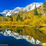 Autumn Colors against Eastern Sierra Mountains thumbnail