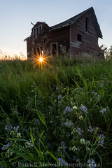 Sunset (burntpixel.ca) Tags: canada manitoba photo photograph rural fine art patrick mcneill burntpixel wrench777 beautiful spectacular sony a7r2 a7rii landscape vertical nature prairie house building decay forgotten rurex abandoned flowers plants sunlight sunset sunrise morning evening field green blue orange