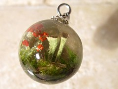British soldier lichen and Cladonia pyxidata pendant (chaerea) Tags: nature woodland moss bryopyte forestfloor lichen cladonia apothecia forest necklace pendant jewelry jewellery naturejewelry