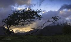Scottish Magic (ChrisKirbyCapturePhotography) Tags: scotland