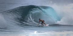 Backdoor (santosh_shanmuga) Tags: surf surfer backdoor surfboard surfing wave crash crest pipe tubular banzai pipeline water saltwater ocean sea person human sport extreme nikon d4 500mm hi hawaii oahu banzaipipeline nort shore northshore