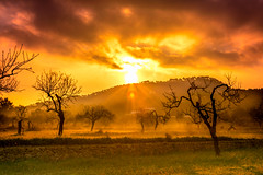 Good Morning (Adilson Cintra) Tags: santjosepdesatalaia illesbalears espanha es nikon d5300 mediterraneansea balearicislands islaspitiusas spain ibiza eivissa santantonideportmany photography nature life sun landscape colorful sunrise sky