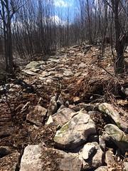 Off-road vehicle trail construction (Maryland DNR) Tags: 2017 offroadvehicletrail orv savageriver stateforest construction