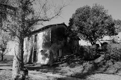 Foto_9007_bn (lumun2012) Tags: lucio landscape mundula canon antiquity architettura antichità antico campagna rurale lazio tamron