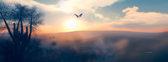 """Nature always wears the colors of the spirit."" (Roy Mildor -5000 Follower, thank you ㋡) Tags: nature desert land wüste sl secondlife sim destination free chill sunset roymildor devin devin2 sand sandsturm"