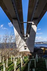 QC_Mar_2017_008 (Jistfoties) Tags: forthbridges forthbridge newforthcrossing queensferrycrossing queensferry bridge pictorialrecord civilengineering construction