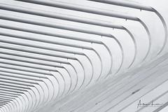 Nexus II (Alec Lux) Tags: aleclux architecture belgium calatrava design guillemins liège luik minimal minimalism santiago station train trainstation urban