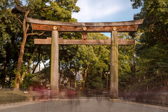 Long Exposure during the day: Torii in Yoyogi park