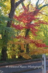 Fairmount Park (169) (Framemaker 2014) Tags: fairmount park japanese tea house philadelphia pennsylvania united states america