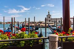 IMG_0157 (ludo.depotter) Tags: gondels italië rivadeglischiavoni sanmarcoplein venetië