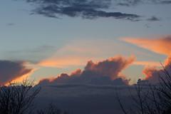 Evening clouds (ArtGordon1) Tags: clouds cloud sunset evening 2017 walthamstow london england uk e17 weather sky davegordon davidgordon daveartgordon davidagordon daveagordon artgordon1