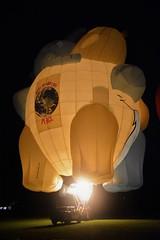 Elephant balloon (Scossadream) Tags: scossa lucaguizzardi spacemonkeypictures spacemonkey smp nikond7100 d7100 newzealand nuovazelanda hamilton oceania maori balloonsoverwaikato balloons balloon mongolfier mongolfiera mongolfiere fuochidartificio fireworks zurunight zuru balloonsfestival festival elephantballoon birdsinloveballoon alienballoon