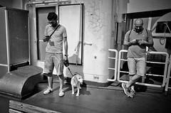 A Man's phone is his castle (Epsilon68 - Street and Travel Photography) Tags: italy travel messinastrait ricoh ricohgrii urban street stphotographia bw blackandwhite blackwhite noireblanc ngc monochrome