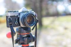 "My film camera ""OM-1 with F.ZUIKO AUTO-S F1.8 50mm"" (Arbit Bamboo0101) Tags: om1 olympus 30mm sigma old camera canoneos kissx7 osaka film new"
