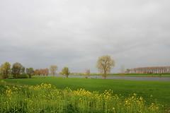 Weerfoto donderdag 6 april (Omroep Brabant) Tags: omroepbrabant weerfotos brabant weer weerfoto brabantseseizoenen seizoenen wwwomroepbrabantnl