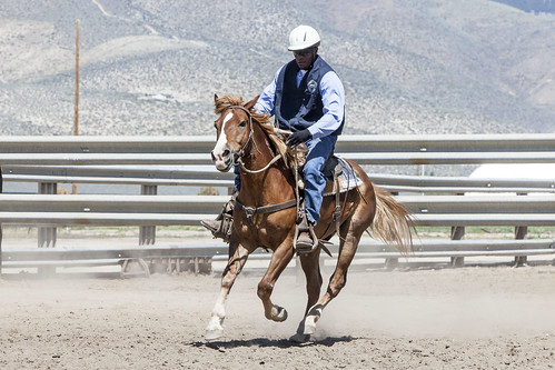 horse training nevada center program northern saddle adoption blm carsoncity correctional inmates trained
