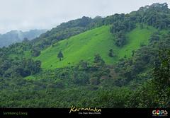 Luscious Greens of Kodagu (Coorg) (GOPAN G. NAIR [ GOPS Photography ]) Tags: india green photography greenery karnataka coorg nair kodagu gops gopan gopsorg gopangnair gopsphotography
