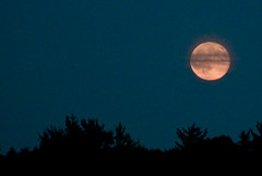 Super Moonrise (David.R.Carroll) Tags: dusk ottawa moonrise supermoon
