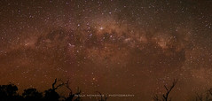 Milky Way over Lake Pamamaroo, outback NSW, Australia (Paula McManus) Tags: longexposure nightphotography sky nature stars landscape olympus newsouthwales outback nightsky omd milkyway em5 lakepamamaroo pamamaroo paulamcmanus 20mmf17 medindee
