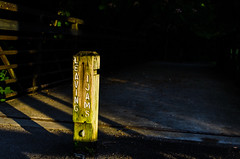 Crossing into the Darkness (babubangla) Tags: light sunset shadow dark bride crossing post knoxville dusk tennessee pole marker passage boundary eveninglight settingsun ijams ijamsnaturecenter boundarymarker