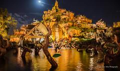 Magic Kingdom (wdwSteve) Tags: nikon magic kingdom disneyworld d7000 sigma1750mmf28 disneyworld2013