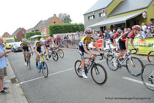 Geel Oosterlo  (43)