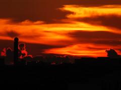 Increible Tampa Sunset