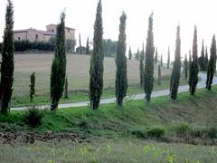 Crete Senese (lreed76) Tags: sunset tuscany valdorcia cretesenese clayhills