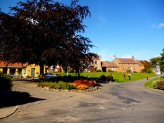 Letham Square (B4bees .(2m views)) Tags: trees grass sunshine scotland interesting scenery colours fife housing lethamfife colourfulpicture visiteastscotland