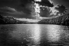 Faces over the lake (derek_michalski) Tags: portrait blackandwhite bw cloud lake nature water monochrome face clouds forest landscape nikon poland naturallight explore illusion 400 200 100views 400views 300views 200views 100 fav 500views 300 500 nikkor favourite 700 700views d800 10favs biancoynegro