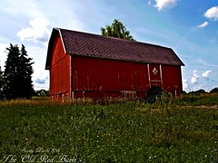 The old red barn (Explore!) (SCOTTS WORLD) Tags: old shadow red summer sky usa sunlight building green abandoned grass architecture clouds barn rural fun midwest unitedstates michigan farm country ruin july bluesky adventure 2014 olympusepm1