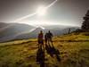 Dog-Mountain-Summit-2-Edit-2-Edit-2-2.jpg