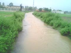 Dhakala_Road (20) (Dhakala Village) Tags: road rain village natural local rasta masjid pani panni greenary gaon sagri villag mankiala mahool kacharasta dhakala mankialastation