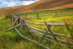 pasture and fences (Mysophie08) Tags: bigmomma 15challengeswinner thechallengefactory fotocompetition fotocompetitionbronze yourock1st gamex2sweepwinner pregamewinner