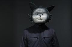 a Cat Called FRITZ by Bertille Chéret