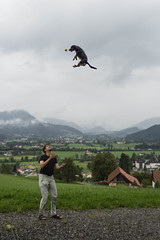[Explore] I believe I can fly (Christine Schmitt) Tags: dog jump explore hund embellishment sprung übertreibung explored balll