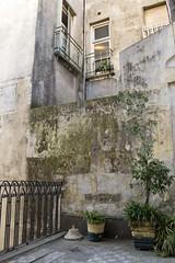 Santelmo (CCurotto) Tags: nikon buenos aires galeria santelmo d3100
