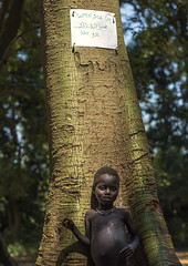 Anuak Tribe Child In Front Of A Tree With A Bible Sentence On It, Gambela, Ethiopia (Eric Lafforgue) Tags: africa boy people tree men nature vertical outdoors day child god quote african sudan faith religion jesus border tribal trunk males ethiopia tribe oneperson tribo hornofafrica ethiopian thiopien etiopia ethiopie etiopa lookingatcamera onlymen colorpicture  childrenonly oneboyonly etiopija africanethnicity 1people gambela ethiopi itang anuak  africanculture etiopien gambella etipia  etiyopya  onechildonly anyuak colourpicture         agnwak anywaa gambelagambella ethio1404512