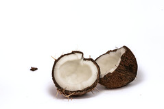 coconut (drugsopen) Tags: white coconut