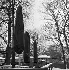 Bord (rotabaga) Tags: sverige sweden svartvitt blackandwhite bw bwfp göteborg gothenburg lomo lomography lubitel166 120 6x6 mediumformat mellanformat diy trädgårdsföreningen