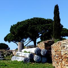 Ostia Antica, Roma (pom.angers) Tags: panasonicdmctz30 february 2017 rome roma lazio italy italia europeanunion ostia ostiaantica ancientrome trees columns 100 150