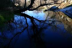 Azul (alfonsocarlospalencia) Tags: azul clamores segovia troncos verde reflejos ramas nieve árboles luz río poesía piedras paraíso siluetas sueño infancia los molinos senda ilusión translúcido evocación