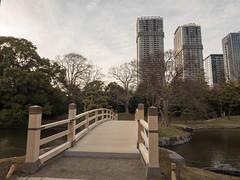 P1640448 (Rambalac) Tags: asia japan lumixgh4 bridge construction pond water азия япония вода мост пруд сооружение