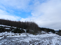 Snow in Glengarry, near Invergarry, March 2017 (allanmaciver) Tags: snow glen garry invergarry scotland cold icy wet slippy trees blue sky clouds allanmaciver
