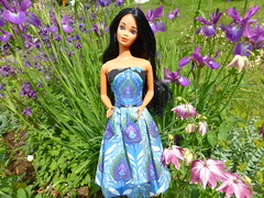 Welcome India Barbie! (Fashion doll fan1) Tags: india dress barbie peacock mattel steffie