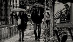 (mgkm photography) Tags: street cidade urban blackandwhite black portugal monochrome rain umbrella dark nikon bokeh sintra chuva streetphotography gimp sigma linux streetphoto pretoebranco blackandwhitephotography streetshot monochromephotography blackwhitephotos lightzone ptbw opensourcephotography ilustrarportugal europeanphotography d3100 streettogs streettogs