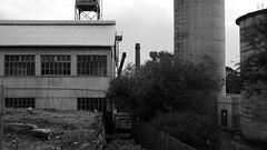 Factory Island