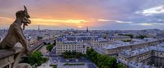 Sunset over Paris. Notre Dame Cathedral tower. (pedro lastra) Tags: paris france skyline de la ile gargoyle cite gargoy